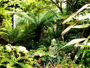 Oriental hideaway in Dublin