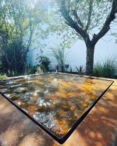 Water Table Under Olive